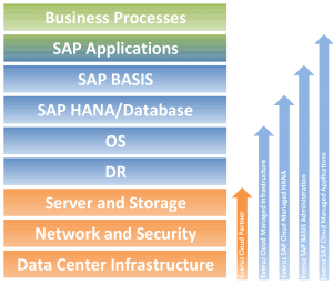 SAP Managed Services